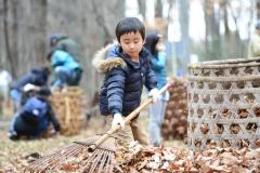 市民参加の体験落ち葉掃き01