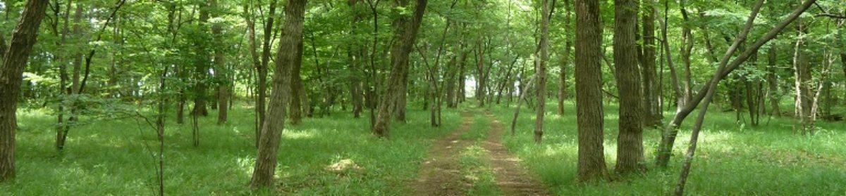 武蔵野の落ち葉堆肥農法世界農業遺産推進協議会